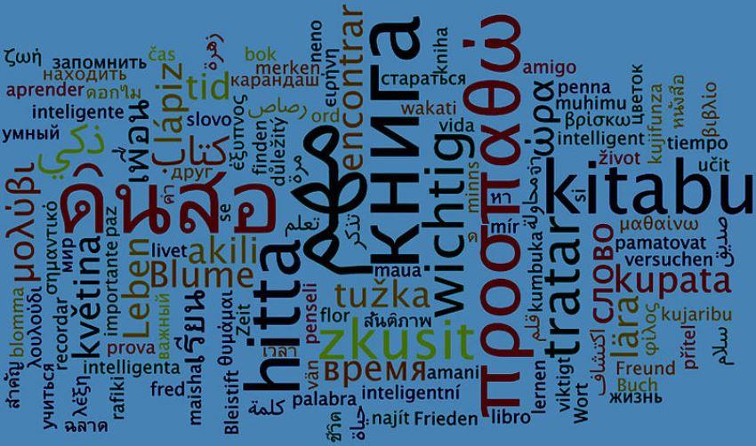 OSAKIDETZA – CALIFICACIONES DEFINITIVAS DE LAS PRUEBAS DE ACREDITACIÓN DE PERFILES LINGÜÍSTICOS 2020- II CONVOCATORIA